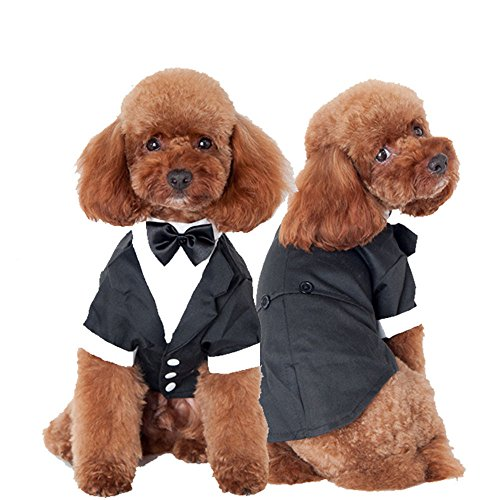 Pet Hund Kleidung Hochzeit passt (Kostüm Panther Pink Hund)