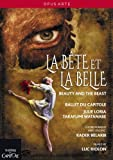 Belarbi:La Bête et La Belle (Théâtre du Capitole, Toulouse, 2013) [DVD]