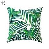 Federa per cuscino da 45x 45cm con stampa vegetale con cactus opuntia o foglie verdi, per la decorazione di casa, 13#, taglia unica