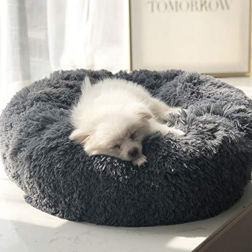 Segle Hundekörbchen Tierbett Hundebett Haustier Katzenbett Hundesofa Katzensofa mit Kissen -Weichem Waschbar Betten für Mittelgroße/Großer Hund-110x110cm-Dunkelgrau