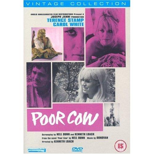 pas-de-larmes-pour-joy-poor-cow-origine-uk-sans-langue-francaise-