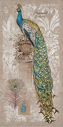 Rahmen-Kunst Keilrahmen-Bild - Chad Barrett: Peacock on Linen II Leinwandbild Pfau Vögel bunt Vintage Landhaus