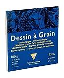 Clairefontaine 96631C Dessin à Grain bloc collé 30F 21x21cm 180g à grain Blanc