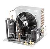 Gowe R22parti di refrigerazione refrigerazione compressore Condensing Unit capacità 1.25HP per Cold sala congelatore