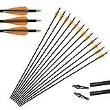"""Huntingdoor Caccia Frecce,12 x 31"""" Frecce in Fibra di Vetro Frecce per bersagli Punte Sostituibile a Vite Target Practice per Ricurvo e Arco Compound ad Alta Resistenza (Giallo)"""