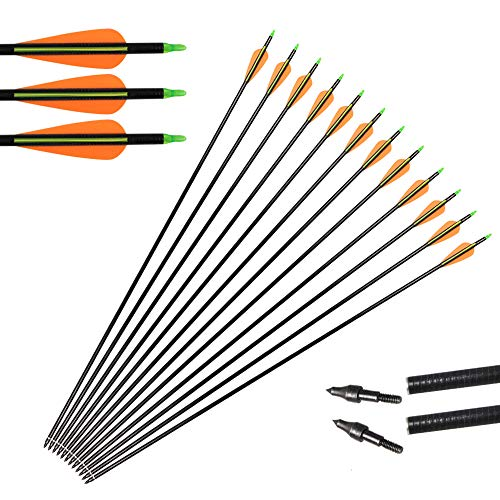 Toparchery Pfeil und Bogen Set: Fiberglaspfeile 12 Pfeile Für Recurvebogen, Langbogen oder Compoundbogen Beim Bogenschießen (Gelb)