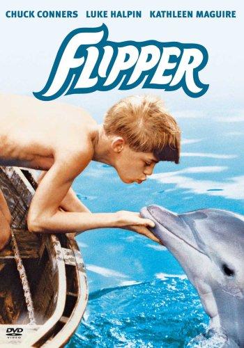 Flipper (Dvd-flipper)