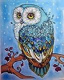 WOWDECOR - Kit per dipingere con i numeri, regalo per adulti e bambini, dipinti a olio fai da te, decorazione per la casa - Gufo 16 x 20 pollici, 1185, senza telaio