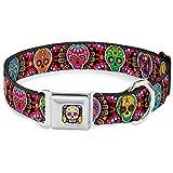 buckle-down 22,9–38,1cm Sechs Sugar Skulls Multi Farbe Hund Halsband