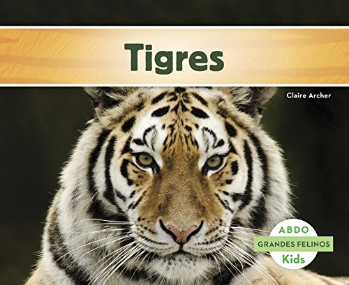 Tigres (Abdo Kids: Grandes Felinos)