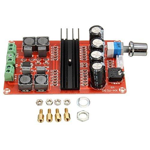 Lelantus TPA3116D2 12v ~ 24v doppio canale digitale 2x100W bordo amplificatore audio per (Home 8 Uscite Da Sovratensioni)