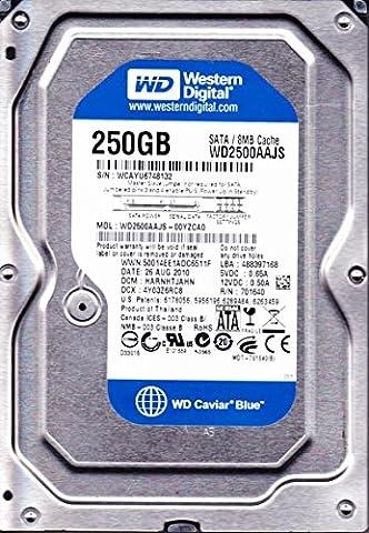 Western Digital (WD) Caviar Bleu SATA II 7200tr/min Mémoire cache 8Mo Bulk/OEM Disque dur de bureau, CCTV DVR pour PC, Mac, NAS, RAID- garantie 1an 250 Go