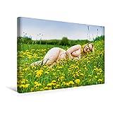 Premium Textil-Leinwand 45 cm x 30 cm quer, HOT XXL GIRLS | Wandbild, Bild auf Keilrahmen, Fertigbild auf echter Leinwand, Leinwanddruck: XXL Frau nackt auf der Wiese (CALVENDO Menschen)