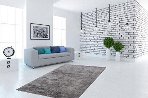Teppich Hochwertig Flachflor Florenz Handgefertigt Viskose Einfarbig Grau Wohnzimmer Größe 120/170 cm (Florenz Beige-teppich)