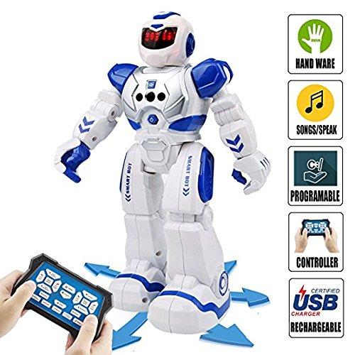 Sendida Remote Control RC Robot ...