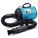 Jlxl Hundetrockner Pet Blaster Grooming Adjust Geräuscharm Fell Föhn Haartrockner High Velocity Blowing Silent (Blau) (Farbe : B)