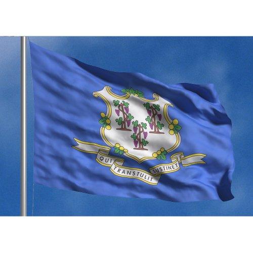 Allied Flagge Outdoor Nylon State Flagge, Connecticut, Vierfußgehstütze von 1,8m