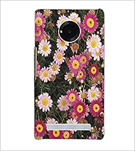 MICROMAX YU YUPHORIA PINK FLOWERS Designer Back Cover Case By PRINTSWAG