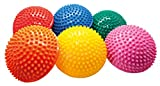 AFH-Webshop 6er Set mit Gratis Pumpe | Therapie Sensorik Balance Igel | Gymnastik Igel | Igelball | ca. 16 Ø cm | á 300 Gramm | Premium Qualität
