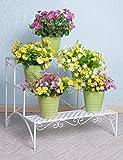 CHAOXIAN mensola del fiore piano del ferro portascala tre scale Europeo - stile piante in vaso per interni ed esterni Scaffale Fioriera ( Colore : Bianca , dimensioni : 70cm*60cm*60cm )