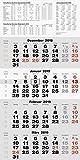 rido/idé 7033420 Wandkalender/Vier-Monats-Kalender quattroplan 2, 1 Blatt = 4 Monate, 330 x 635 mm, Kalendarium  2019
