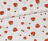 alles-meine.de GmbH 0,36 m * 0,69 m - Stoff -  Erdbeere  -