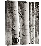 """Global Gallery Giclee Stretched Canvas Artwork, 24 x 32"""""""