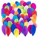 Plumas de Ganso, 300 pcs Plumas de Gallo Manualidades Decoración para Disfraces Hats, Hogar Bricolaje, Ropa Casa Fiesta (Color)
