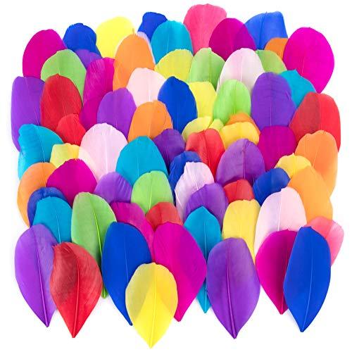 Bunte Federn, 300 Stück bunt Gänsefedern, ideal als Dekoration zum Karnival für Halloween Fest Masken, Kostüme und Basteln für Kinder, Sicher und Ungiftig und Nicht verblassen (Fliege Mischfarbe)
