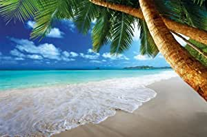 Fototapete Karibik Sandstrand Mit Palmen Und Meer Wand