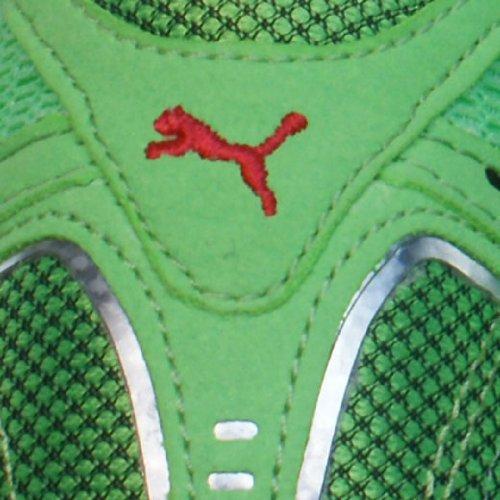 Puma Complete SLX Endspurt Sprint Laufen Spitzen Green