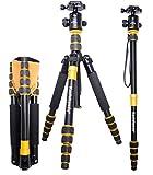 Koolehaoda Portable 62-inch Camera Tripod Monopod & Ball Head Light-weight for SLR Dc Photo Travel