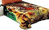 Jml Super Soft Korean Style Mink Plush Fleece Bed Raschel Blanket, Queen, Brown Tiger