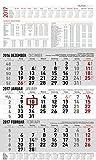 3-Monatskalender groß 2017 - Wandplaner/Bürokalender (30 x 49) - mit Datumsschieber - mit Jahresübersicht - mit Ferienterminen