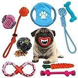 Osla Giocattoli per Cani Giochi Cane 10 Pezzi Cucciolo di Cane Masticare Durevole Giocattoli per Cani di Taglia Piccola,Media Dentizione Formazione Giocattolo,Dog Frisbee Squeaky Toys Dog Treat Ball