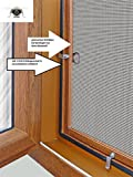 Fliegengitter- Insektenschutz- Alu- GOLDEICHE optimal für Rolläden- Insektenschutzgitterfarbe SCHWARZ (100cm x 120cm, ohne Einhängewinkel)