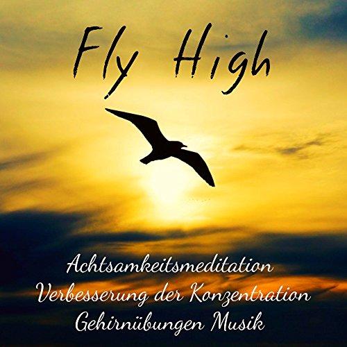 Fly High - Achtsamkeitsmeditation Verbesserung der Konzentration Gehirnübungen Musik mit Binaurale New Age Natur Geräusche