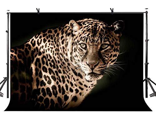 BuEnn Amerikanischer Gepard-Hintergrund-dunkler Vorhang-Gepard Americana Minimalistic-Fotografie-Hintergrund des Hintergrund-7x5ft und Studiofotografie-Hintergrund-Requisiten LYGE807