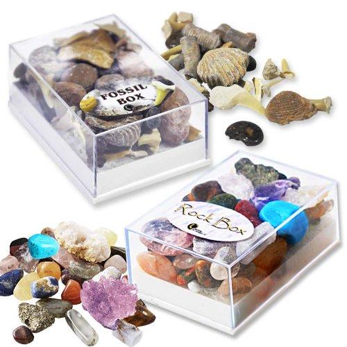 fossil-rock-box-set