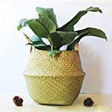 Samber Home Storage Organisation, Hand-Woven Foldable Plant Flower Pot Natural Seagrass Woven Basket Toy Storage Basket Wovening Laundry Basket Foldable Handcraft Weave Belly Basket with Handle(A/S)