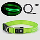 Pumila LED Dog Collar Light Rechargeable Safety Dogs Collar Flashing for Night Dark Increased Visibility, 100% Waterproof Adjustable Super Bright Flashing Collar for Small Large Dog - Green - S