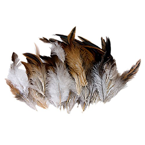 Natural Decoration Rooster Cock Feather-Ideal for Costumes, Hats, Home Decor, etc (accesorio de disfraz)