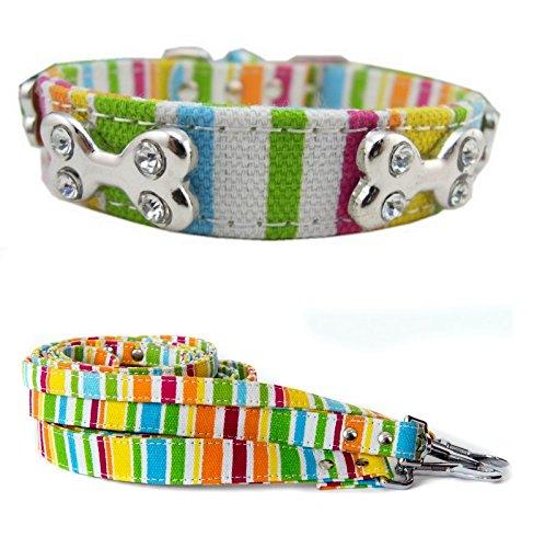 Lushpetz Stripey Hund Halsband und Leine Set für Kleine, Mittelgroße und Große Hunde, Large, Multi -
