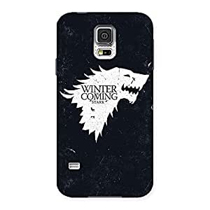 Radiant Thrones And Winter Back Case Cover for Samsung Galaxy S5