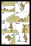 Coole schöne fröhliche Postkarte | Bilderrätsel im Comic Stil Hasen Rätsel |