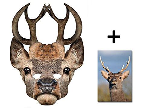 Hirsch Tier Single Karte Partei Gesichtsmasken (Maske) Enthält 6X4 (15X10Cm) ()
