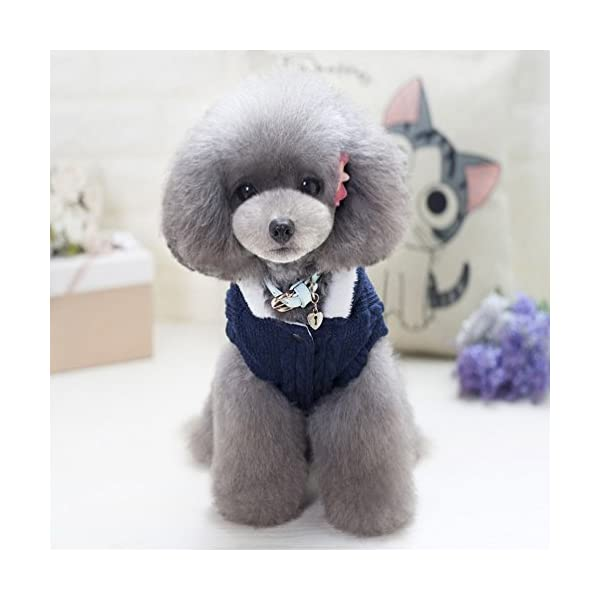 smalllee_lucky_store Knitted Dog Clothes Jumper with Hood Warm Hoodie Jacket Coat for Small Dogs 4