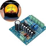 LaDicha AC 12V Stereo VU Meter Driver Board Verstärker DB Audio Level Input Hintergrundbeleuchtung