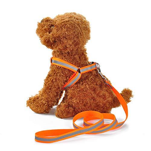 MTHDD Hundegeschirr, hoher, einfaches An-und Ausziehen Nylon Hundeleine für Kleine, Mittlere und Große Hunde Perfekt für Walking Laufen Training,Orange,S(1.5 * 120CM) -