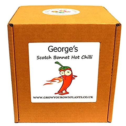Personalised Grow Your Own Scotch Bonnet Hot Chillies Plant Kit - Unusual Birthday or Christmas Gardening / Gardeners